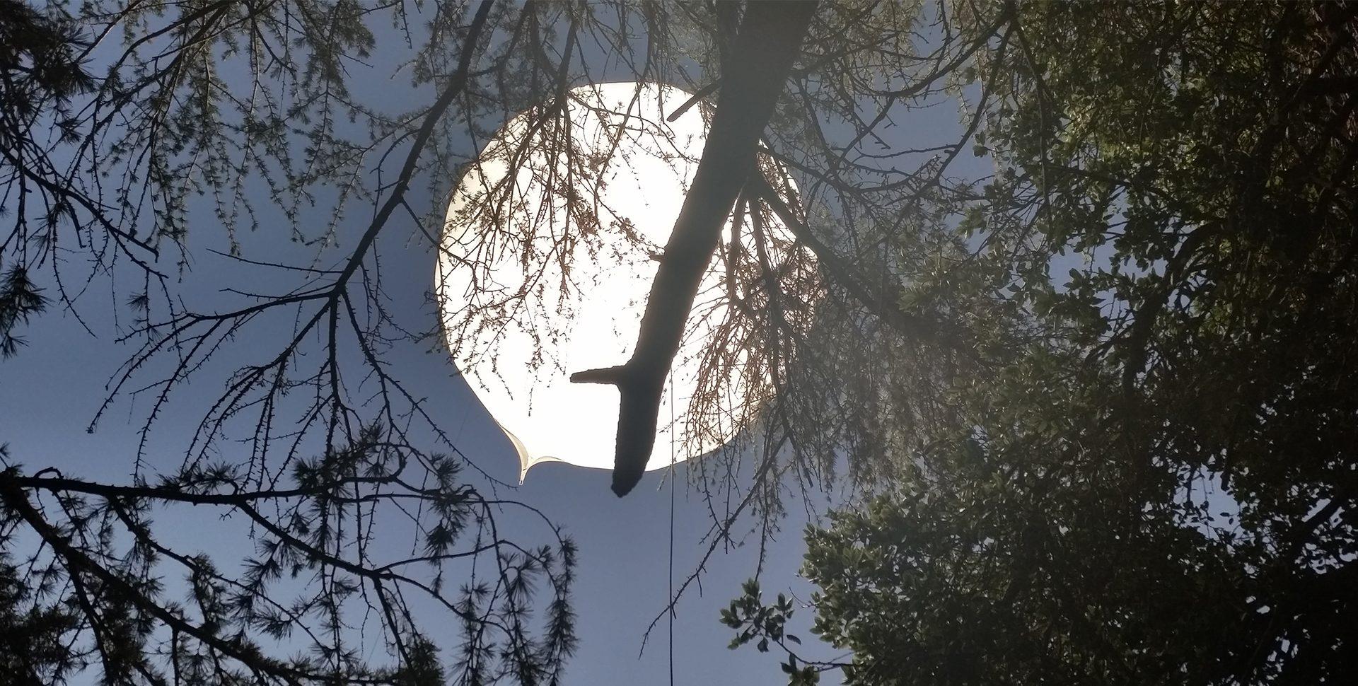 Sphere - Ellipse: HMI