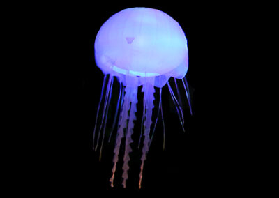 Jellyfish I Blue