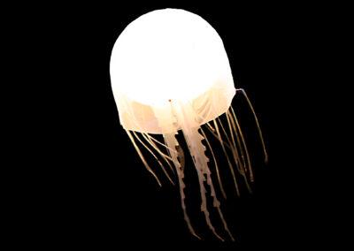 Jellyfish I White